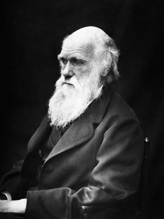 Биологи обнаружили ошибку в теории Дарвина