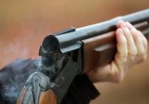 Мужчина в подмосковных Химках устроил стрельбу из ружья по пилившим деревья рабочим