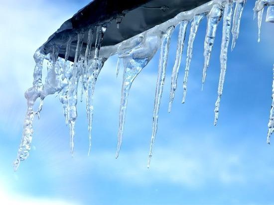 Беспрецедентное потепление: в Москве ожидается температурный рекорд