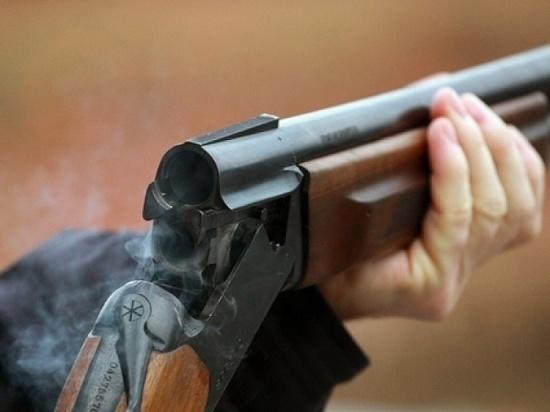 Житель Подмосковья открыл стрельбу по рабочим, уронившим дерево на дом