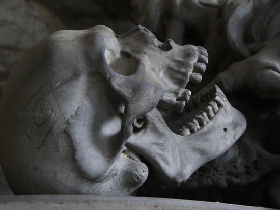 В костной ткани обнаружены «весы», помогающие избежать ожирения