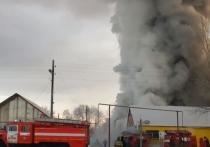 Смертоносный пожар на фабрике под Новосибирском: китайцы спасали обувь