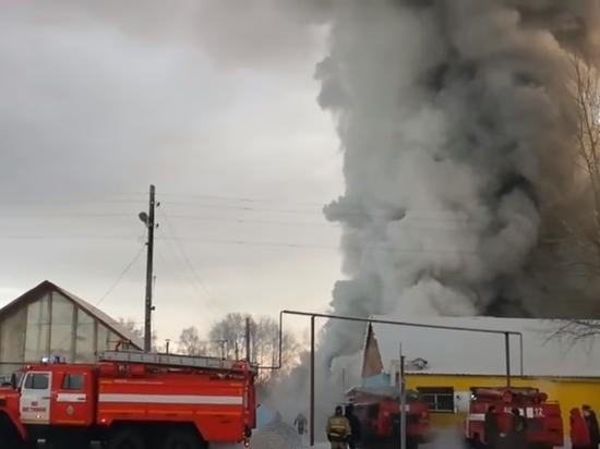534f0e4d5 Смертоносный пожар на фабрике под Новосибирском: китайцы спасали обувь