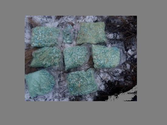 Два волгоградца закопали в Городищенском районе 7 кг амфетамина
