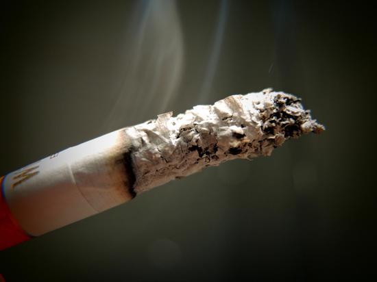 Медведев запретил швырять окурки: за курение на автобане будут штрафовать