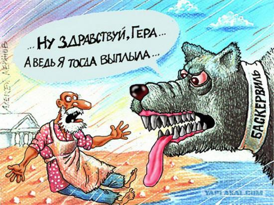 Год Друга человека в России и в Саратове всегда был рубежным и поисковым