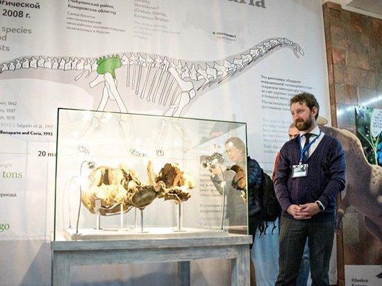 В Сибири обнаружен новый вид гигантских динозавров