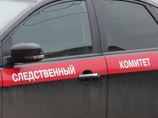 СК ответил на заявление Польши о взрывах на борту самолета Качиньского