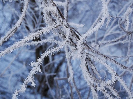 Очередной погодный рекорд ожидается в Москве: мороз крепчает