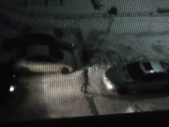 Полиция не стала задерживать пьяную дебоширку, буянившую под окнами всю ночь