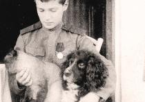 Царские хвостики: как сложилась судьба собак Николая II