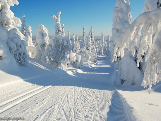 В Сочи продали свыше 160 тысяч  ски-пассов на объекты Красной Поляны