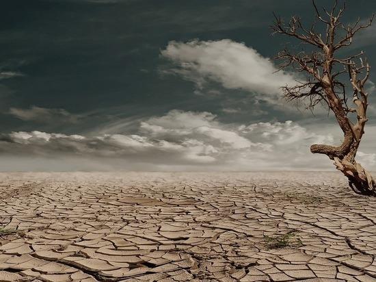 Климатологи: пытаясь спасти Землю, человечество обречет ее на катастрофу