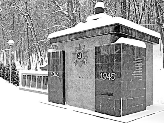 Какую роль сыграл 41-й пограничный полк НКВД в обороне Воронежа