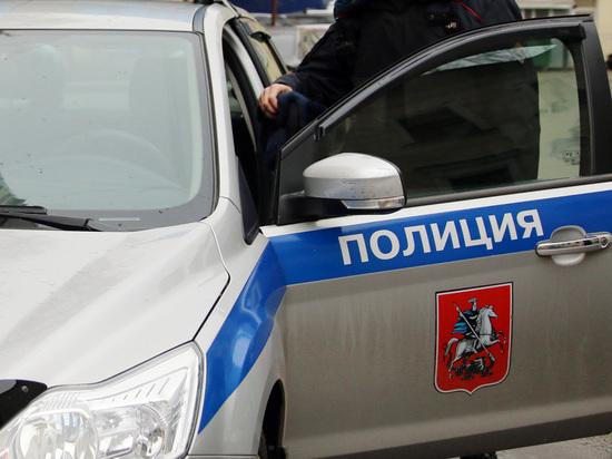 Необычное ДТП в Москве: полицейская машина столкнулась с собачьей упряжкой