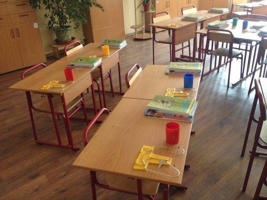 Эпидемия насилия в российских школах: ученые составили типовой портрет агрессора