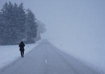 Из-за обморожения девушки на омской трассе Бурков инициировал проверки перевозчиков