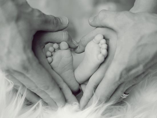 На рассмотрение заявления родителей чиновникам отведут не более месяца