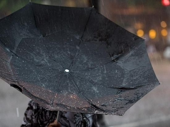 На Кубань в начале февраля придут дожди
