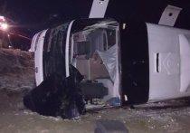 ДТП с рейсовым автобусом произошло на трассе М-21: четверо погибли, в том числе и ребенок