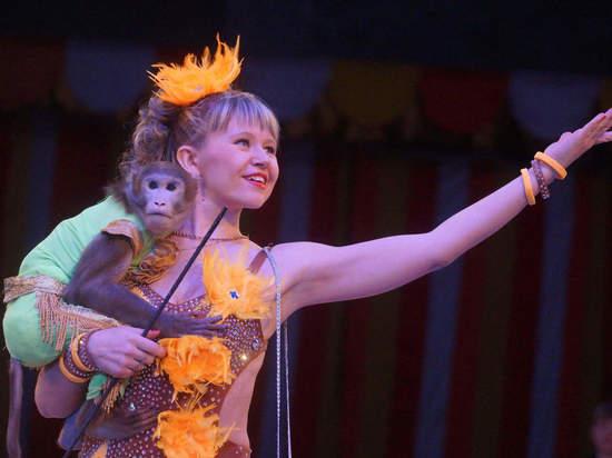 Семейный цирковой дуэт привёз в Красноярск аттракцион с хищниками