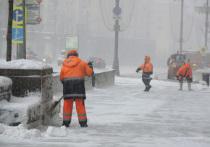 Наступил в лужу и погиб: новые жертвы снегопада в Москве