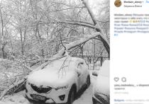 «Таких снегопадов не было 146 лет»: синоптики пообещали новые катаклизмы