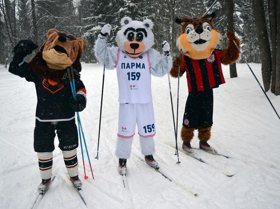 Во время массового забега «Лыжня России 2018» жители Прикамья смогут выполнить нормативы ГТО