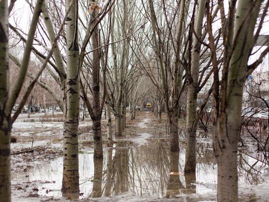 Непогода спровоцировала транспортный коллапс в Волгограде: на дорогах потоки воды и пробки