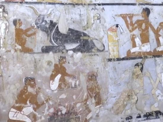 В Египте нашли гробницу с изображением домашних обезьян