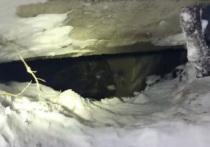5-летний ребёнок провалился  под землю и замёрз