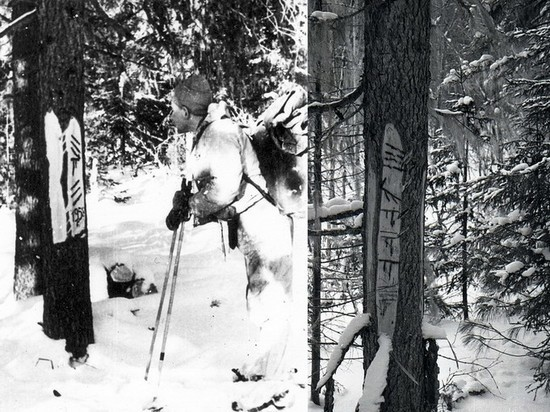 Очередная версия гибели группы Дятлова: предполагаемый убийца попал на фото