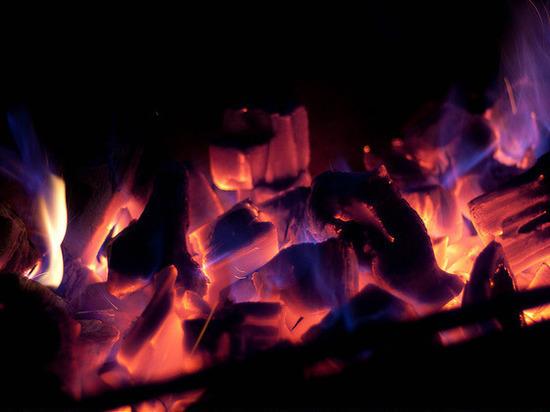 Древние гоминиды обжигали орудия из дерева