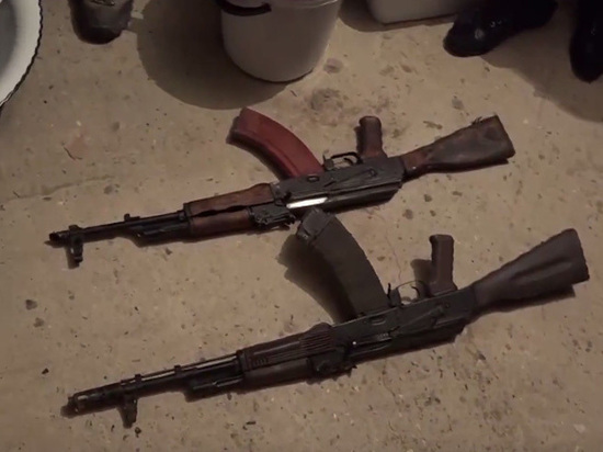 Тигр и золотые пистолеты: опубликовано видео обысков во дворце чиновника Дагестана