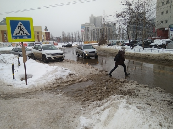 Воронежский автоэксперт проанализировал ситуацию со «снежными граблями»