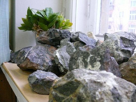 Карельские редкоземельные металлы: почему Россия не производит собственных «мобильников»