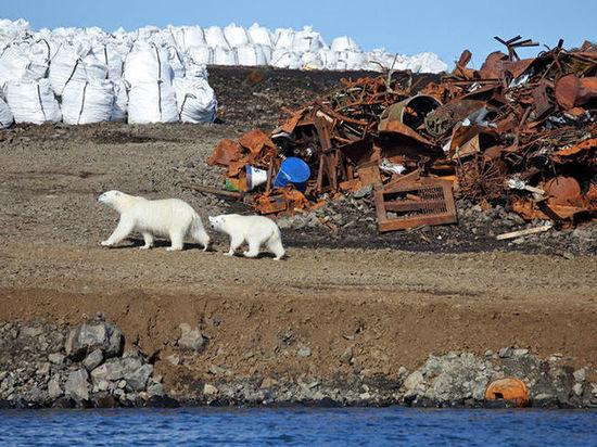 Коммунальные отходы в Арктике – ПОРА заняться этим!