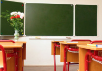 Сельская цензура: почему школьницу наказали за матерное стихотворение Маяковского