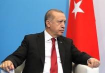 По пути России: Эрдоган намерен направить войска в Идлиб