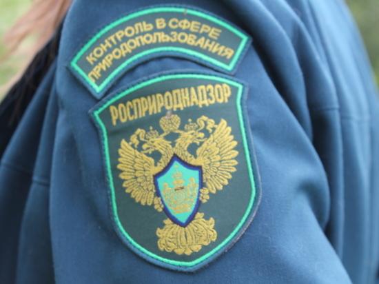 Федеральные чиновники проверят шахты Кузбасса после жалоб жителей