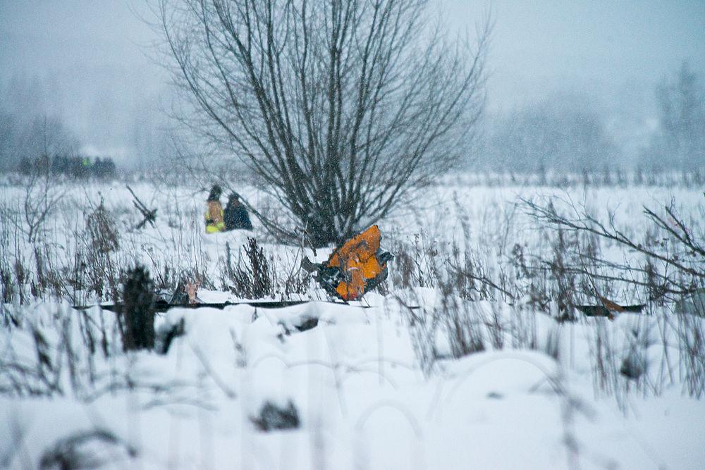 Новые фото с места крушения Ан-148: фрагменты висят на деревьях