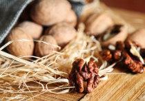 Грецкий орех мог бы озолотить казахстанских фермеров