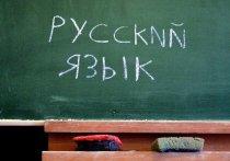 Почему язык Пушкина преподносится как преграда для укрепления национального самосознания?