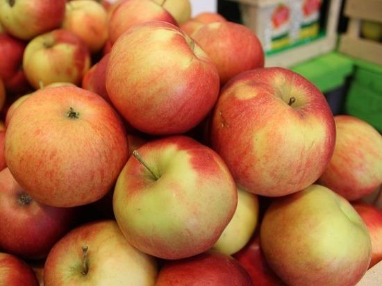 Яблоко раздора: Россельхознадзор запретил ввоз белорусских фруктов