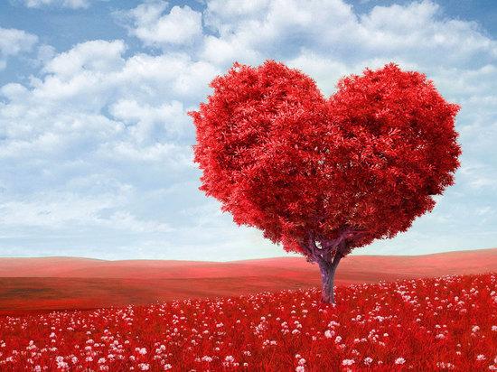 Топ-7 самых необычных валентинок от звезд и обычных людей