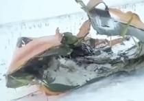 Межгосударственный авиационный комитет (МАК) передал следователям расшифрованные показания бортовых самописцев пассажирского Ан-148, при крушении которого в Подмосковье 11 февраля погиб 71 человек