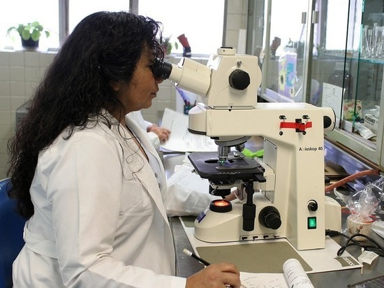 Созданы нанороботы, уничтожающие рак