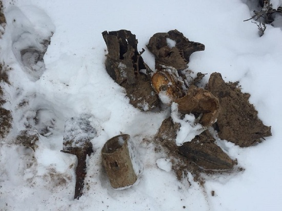 Останки воинов найдены на территории резванских дач в Калуге