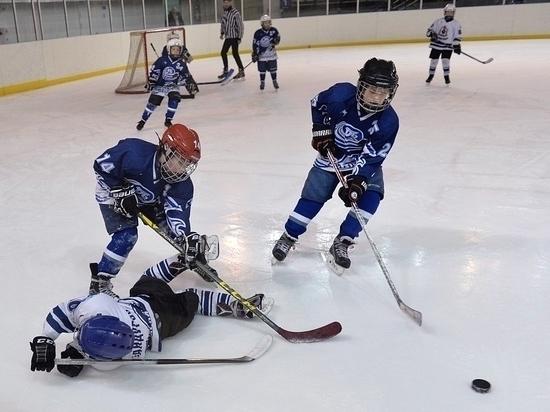 В Ванино развивают хоккей мирового уровня