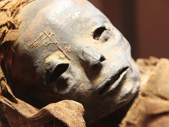В Египте обнаружили мумию верховного жреца и древние сокровища